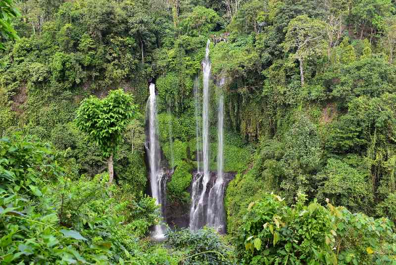 088.Sekumpul Waterfall
